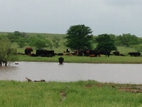 SW OK Ranch-rdb